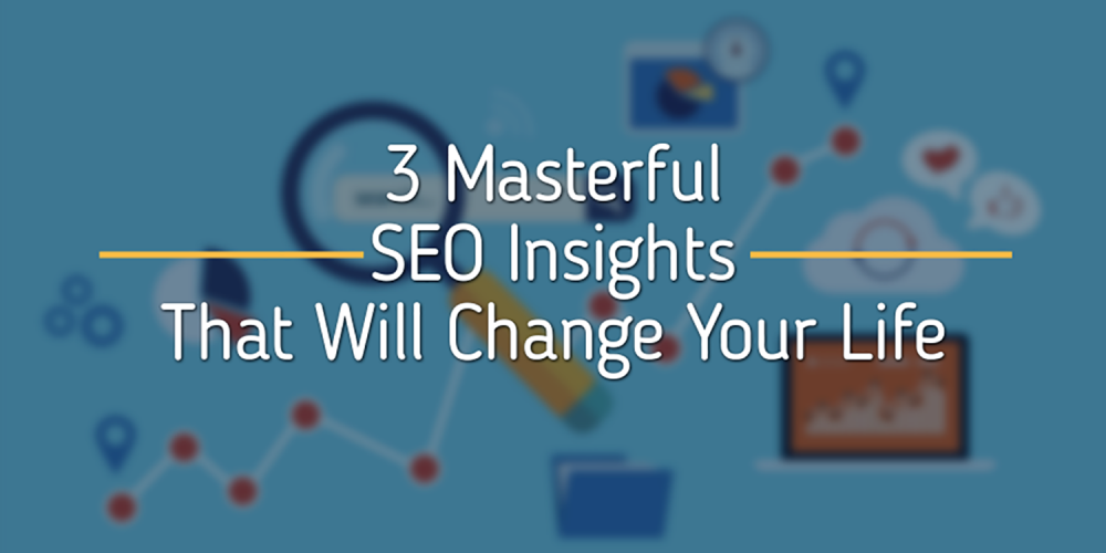SEO Insights