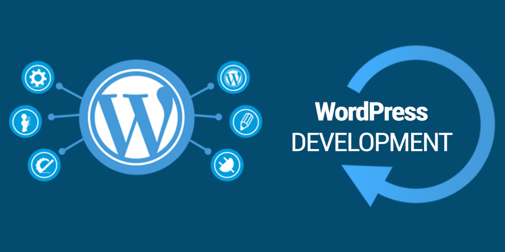 Why Should WordPress Developers be taken more seriously? | D5 Creation