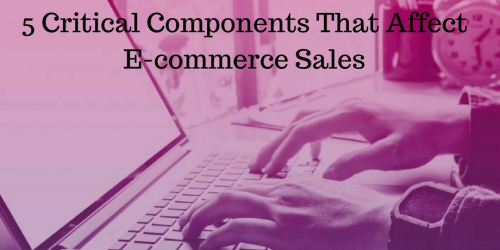 Components That Affect E-commerce Sales