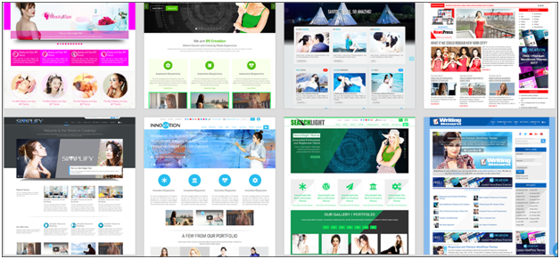 Professional WordPress Themes - design startup website
